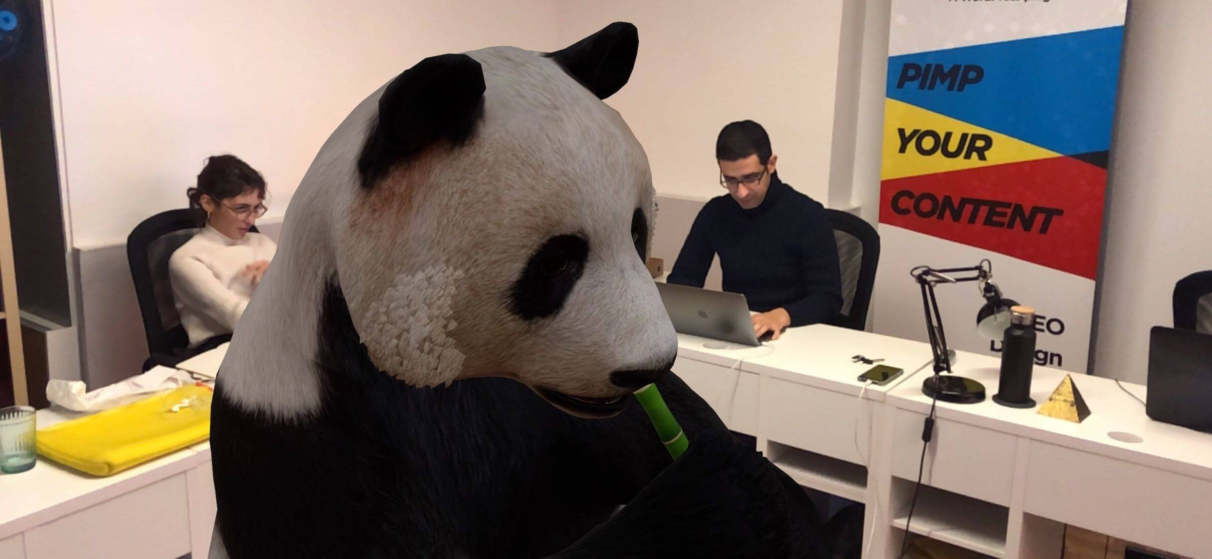 A Giant Panda just walked into our office ?