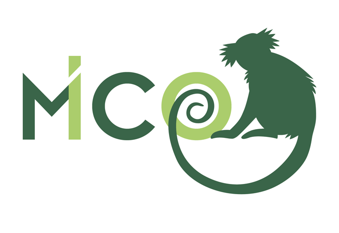 What is MICO research about?